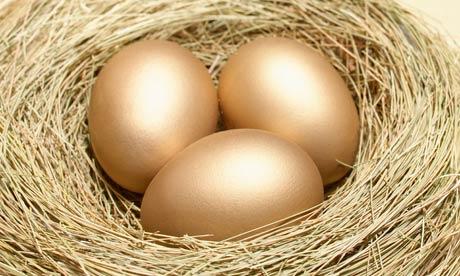 Nest-Egg-saver-006